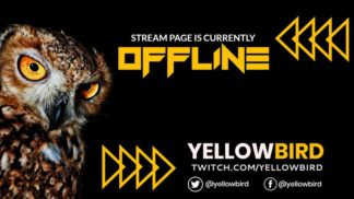 Bird Twitch Offline Banner Design