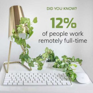 Remote Work Infographic Post Template